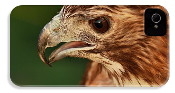 Hawk Eyes IPhone 4s Case by Dan Sproul