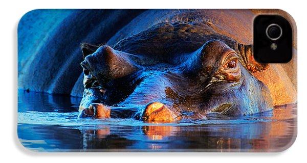Hippopotamus  At Sunset IPhone 4s Case by Johan Swanepoel