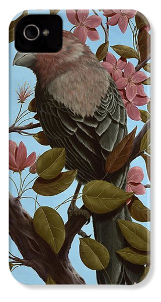House Finch IPhone 4s Case