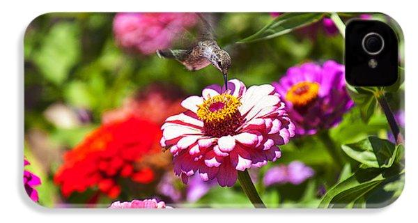 Hummingbird Flight IPhone 4s Case by Garry Gay