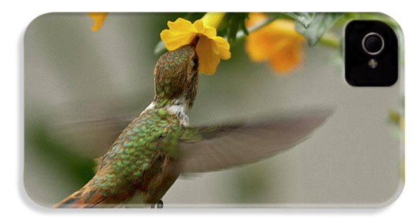 Hummingbird Sips Nectar IPhone 4s Case