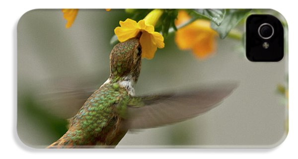 Hummingbird Sips Nectar IPhone 4s Case by Heiko Koehrer-Wagner