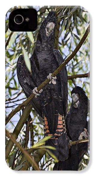 I Say Old Chap IPhone 4s Case by Douglas Barnard