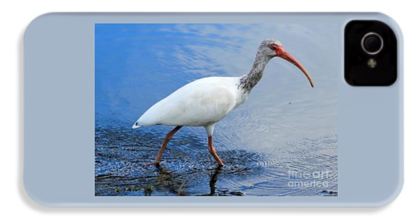 Ibis Visitor IPhone 4s Case by Carol Groenen