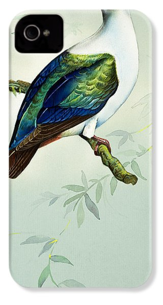 Imperial Fruit Pigeon IPhone 4s Case by Bert Illoss