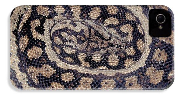Inland Carpet Python  IPhone 4s Case