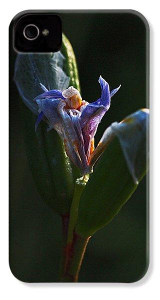 Iris Emerging  IPhone 4s Case by Rona Black