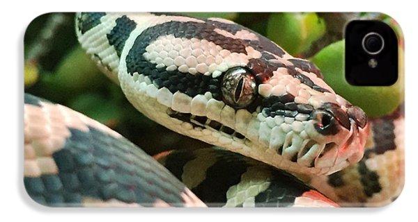 Jungle Python IPhone 4s Case