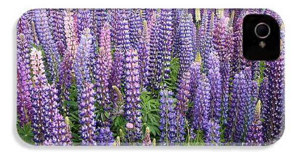 IPhone 4s Case featuring the photograph Just Lupins by Nareeta Martin
