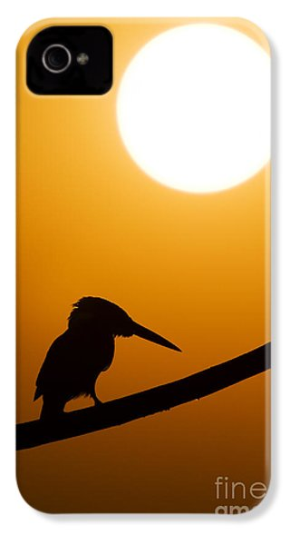 Kingfisher Sunset Silhouette IPhone 4s Case by Tim Gainey