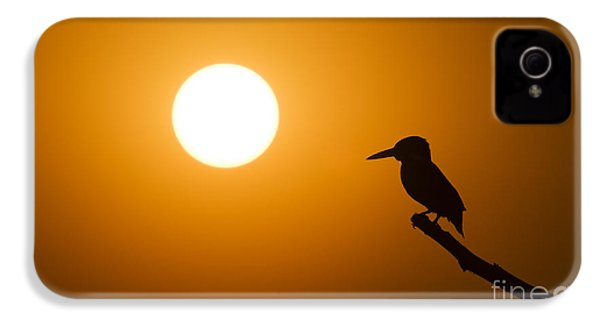 Kingfisher Sunset IPhone 4s Case by Tim Gainey