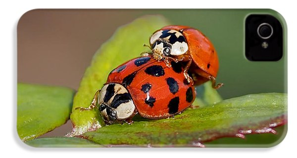 Ladybird Coupling IPhone 4s Case by Rona Black