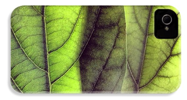 Leaf Abstract IPhone 4s Case by Christy Beckwith
