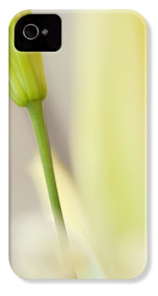 Lily Delight. Floral Abstract IPhone 4s Case by Jenny Rainbow