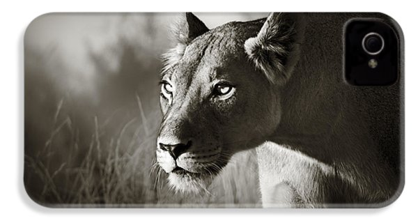 Lioness Stalking IPhone 4s Case by Johan Swanepoel
