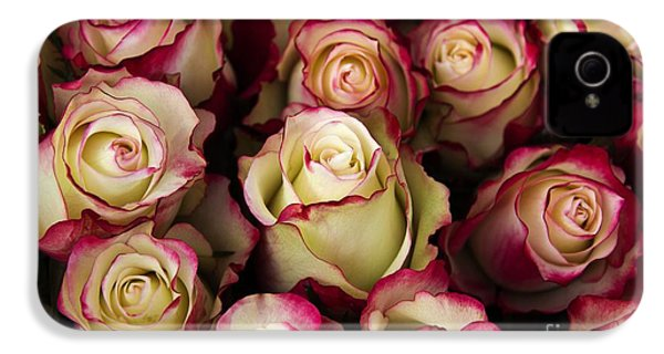 Love Is A Rose IIi IPhone 4s Case by Al Bourassa