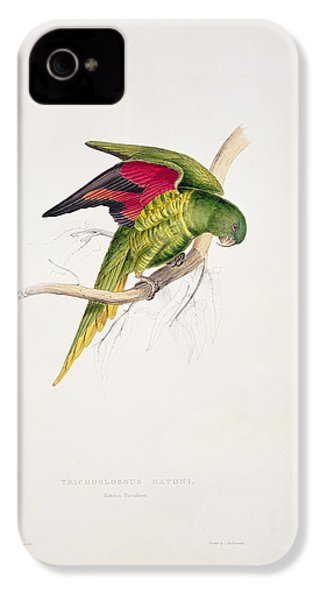 Matons Parakeet IPhone 4s Case by Edward Lear