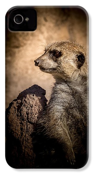 Meerkat 12 IPhone 4s Case by Ernie Echols