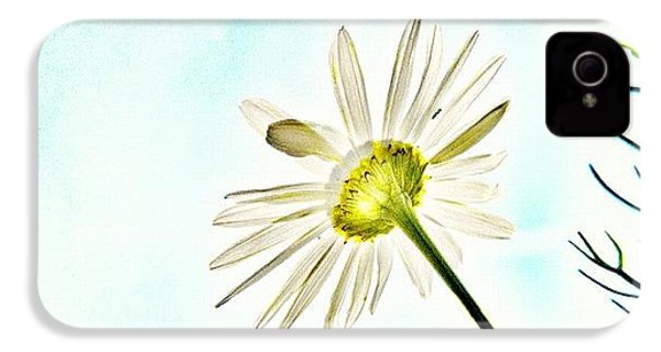 #mgmarts #daisy #flower #morning IPhone 4s Case