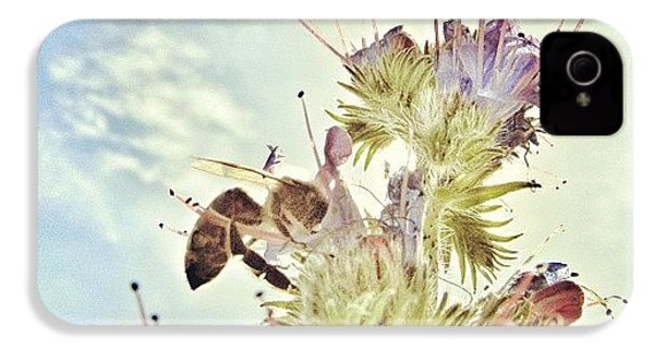 #mgmarts #flower #spring #summer #bee IPhone 4s Case by Marianna Mills