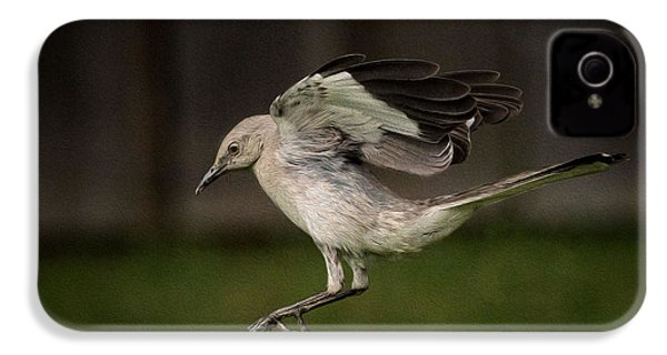 Mockingbird No. 2 IPhone 4s Case by Rick Barnard
