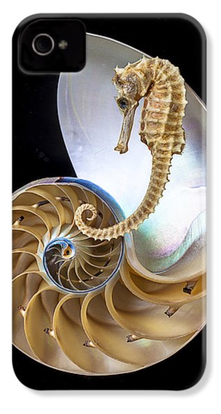 Nautilus With Seahorse IPhone 4s Case by Garry Gay