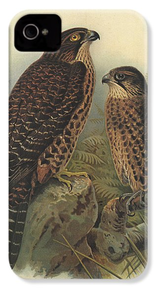 New Zealand Falcon IPhone 4s Case by Dreyer Wildlife Print Collections
