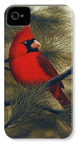 Northern Cardinal IPhone 4s Case by Rick Bainbridge