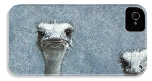 Ostriches IPhone 4s Case by James W Johnson