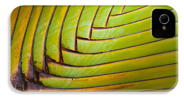 Palm Tree Leafs IPhone 4s Case by Sebastian Musial