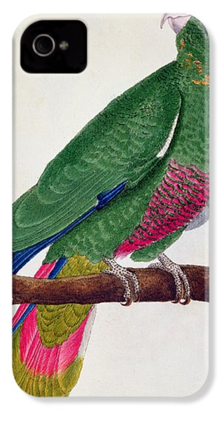 Parrot IPhone 4s Case by Francois Nicolas Martinet