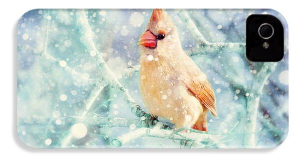 Peaches In The Snow IPhone 4s Case by Amy Tyler