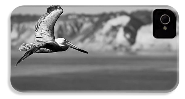 Pelican In Black And White IPhone 4s Case by Sebastian Musial