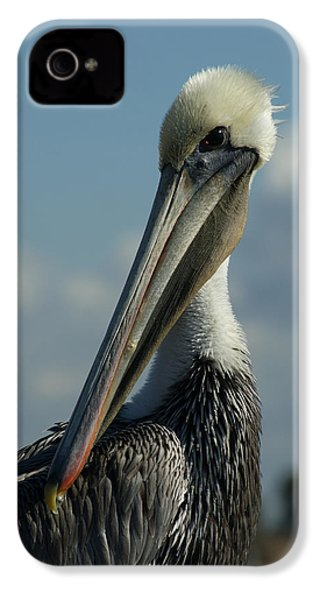 Pelican Profile IPhone 4s Case by Ernie Echols
