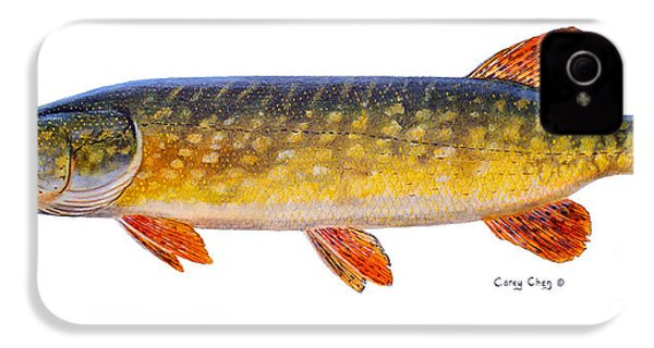 Pike IPhone 4s Case by Carey Chen