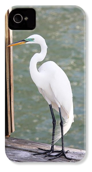 Pretty Great Egret IPhone 4s Case