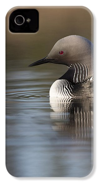Profile Of A Pacific Loon IPhone 4s Case by Tim Grams
