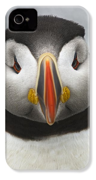 Puffin It Up... IPhone 4s Case