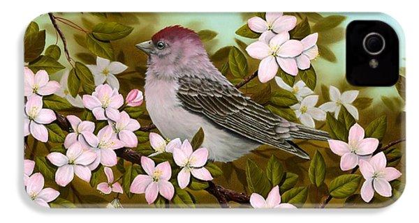 Purple Finch IPhone 4s Case