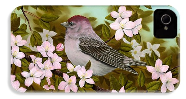 Purple Finch IPhone 4s Case by Rick Bainbridge