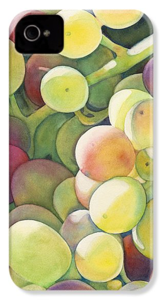 Ripening IPhone 4s Case by Sandy Haight