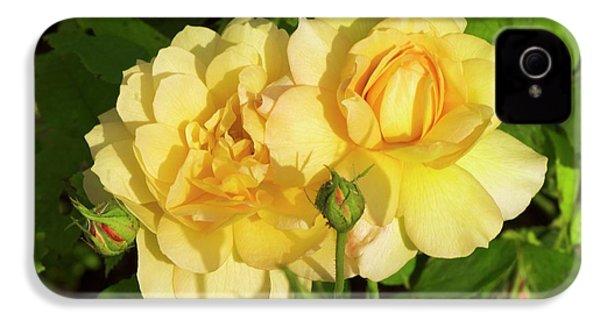 Rosa 'pegasus' IPhone 4s Case by Adrian Thomas