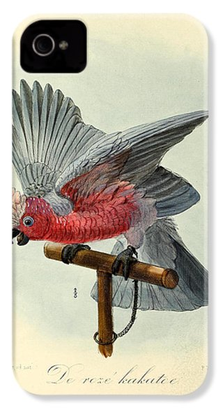 Rose Cockatoo IPhone 4s Case by Rob Dreyer