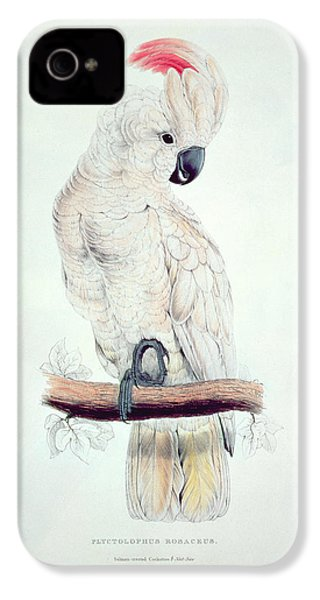 Salmon Crested Cockatoo IPhone 4s Case by Edward Lear