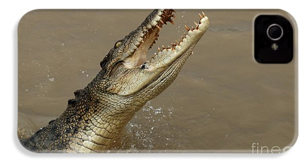 Salt Water Crocodile Australia IPhone 4s Case by Bob Christopher