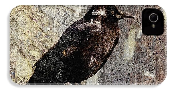 Same Crow Different Day IPhone 4s Case by Carol Leigh
