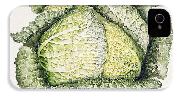 Savoy Cabbage  IPhone 4s Case