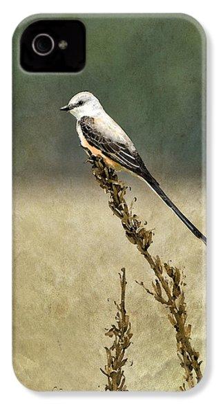 Scissortailed-flycatcher IPhone 4s Case by Betty LaRue