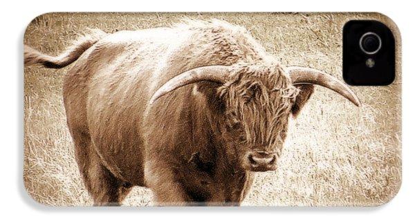 Scottish Highlander Bull IPhone 4s Case by Karen Shackles
