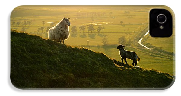 Scottish Sheep And Lamb IPhone 4s Case by Mr Doomits